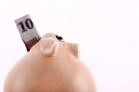 moneybox: Pig moneybox