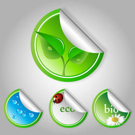 Green Eco Labels and Stickers Vector