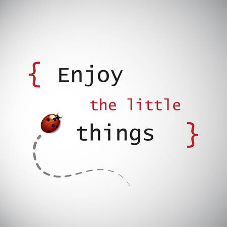 ladybird: Inspirational Quote - Enjoy the Little Things On a Grey Background With Ladybird