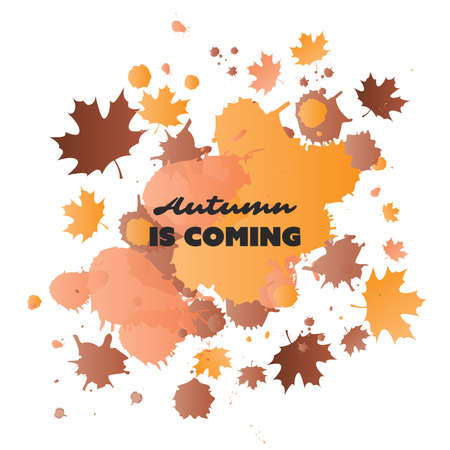 Autumn is Coming - Colorful Cover, Banner, Placard, Poster or Flyer Design with Autumn Leaves