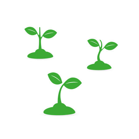 Seedling, Small Growing Plant - Design Set Vetores