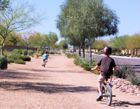 Young kids riding their bikes along a dirt path in a tree lined neighborhood  photo