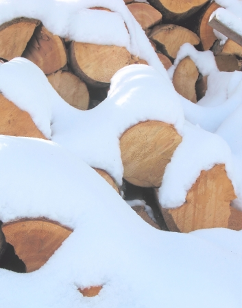 outdoor fireplace: Stack of cut firewood covered in a layer of white fluffy snow.