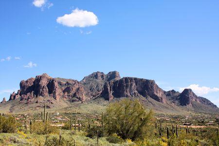 birds desert: Superstition Mountains, Arizona