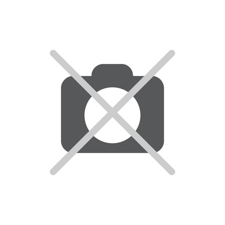 No photo camera icon flat. Pictogram on white background. Vector illustration symbol