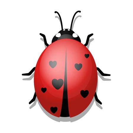 Ladybug with Hearts on White Background. Vector illustration eps10