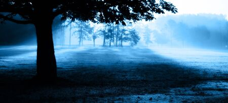 Misty Morning  Banque d'images