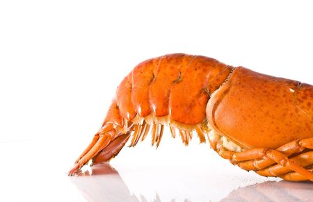 lobster tail: Cooked fresh lobster tail on white background