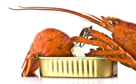 tinned: Tinned lobster on white background Stock Photo