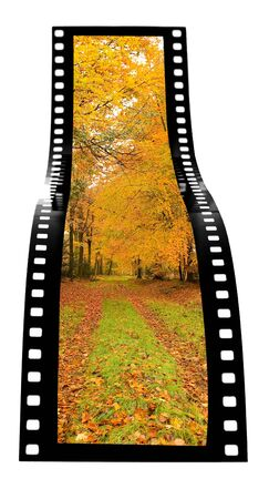 Autumn film strip photo
