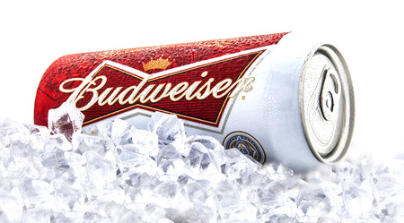 packshot: SWINDON, UK - FEBRUARY 1, 2014:  Can of Budweiser beer on a bed of ice  over a white background