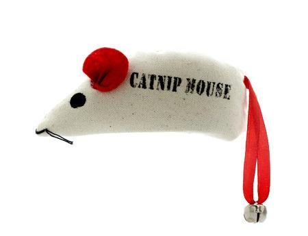 nepeta cataria: SWINDON, Regno Unito - 22 Marzo 2014: Catnip mouse su uno sfondo bianco