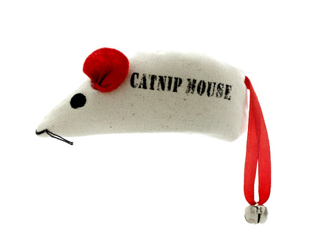 catnip: SWINDON, UK - MARCH 22, 2014: Catnip Mouse on a white background Editorial