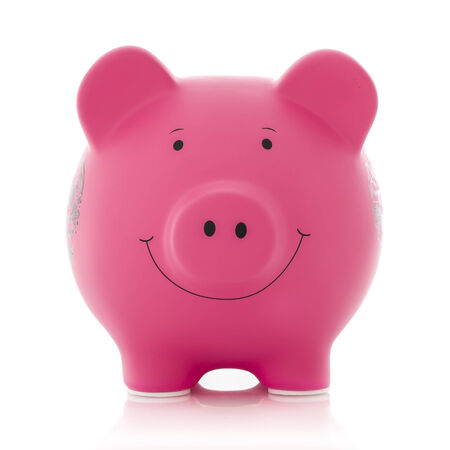 snouts: Pink Piggy Bank on a white Background