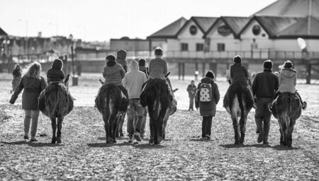 Donkey Rides On Weston-Super-Mare Beach photo