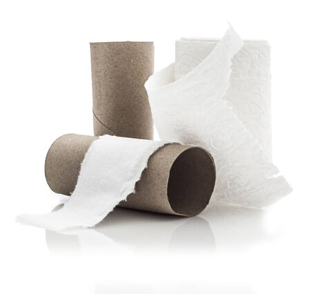 paper roll: Empty toilet paper roll on white background