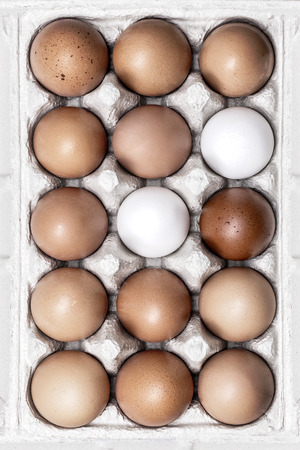 15 Free Range Eggs in a cardboard egg box
