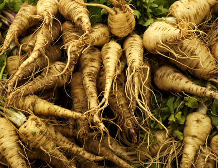 A heap of fresh parsnip