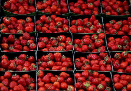 Boxes of strawberries on display at a street stall Stock Photo