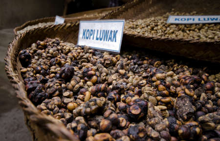 a closeup of unprocessed luwak coffee the most expensive coffee in the world