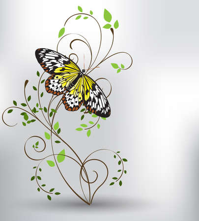 spring and butterfly Vector