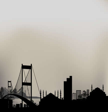 istanbul and Bosphorus bridge Vector