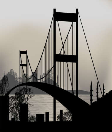 istanbul and the Bosphorus Bridge Vector