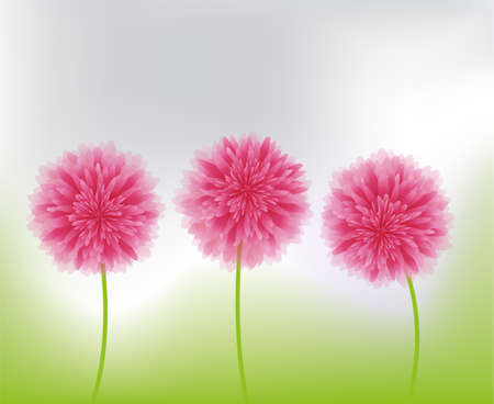 women s day: pink flowers in nature Illustration