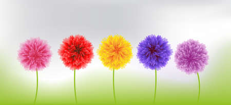 child s: in nature, colorful spring flowers
