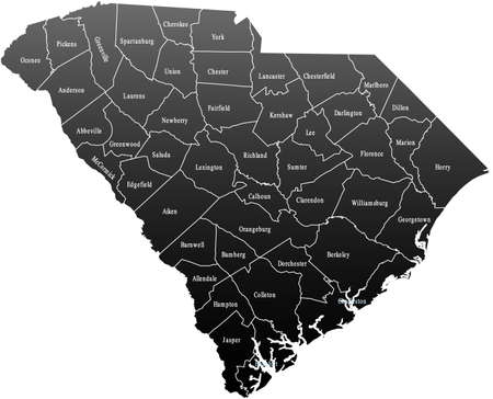 South Carolina Map Фото со стока - 44954015