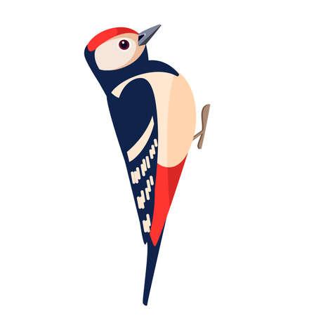 Woodpecker bird. Flat cartoon character design. Colorful bird icon. Vector illustration isolated on white background Vecteurs