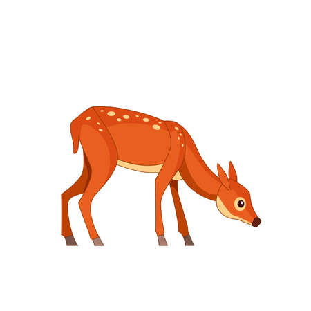 Forest spotted deer in standing pose bending to the ground. Wildlife of forest mammals concept. Cartoon vector Illustration flat style isolated white background