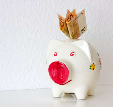 cute piggy bank with banknotes