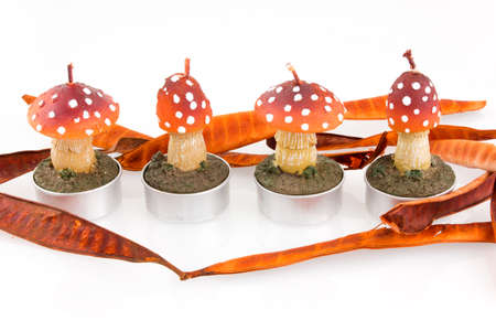 four candles in mushroom shape on white background