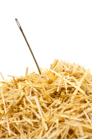 Needle in a haystack , Isolated on white photo