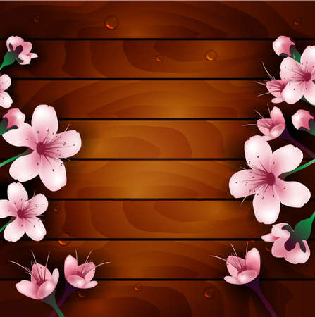cherry wood: cherry blossom flowers on wood background