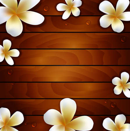 haitian: frangipani flower on wood background
