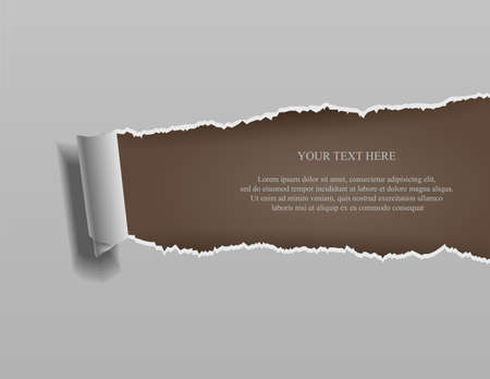 Realistic torn paper with rolled edges on brown background