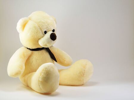 Teddy bear toy with brown bow isolated on white background.