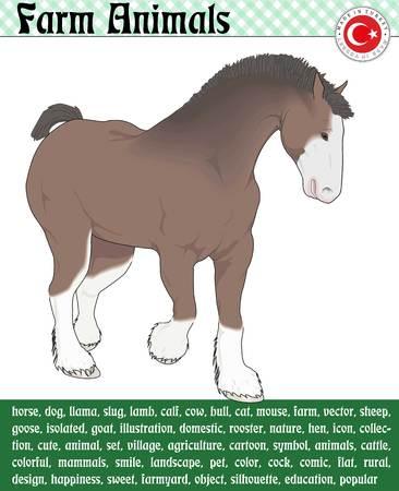 Brown Horse 向量圖像