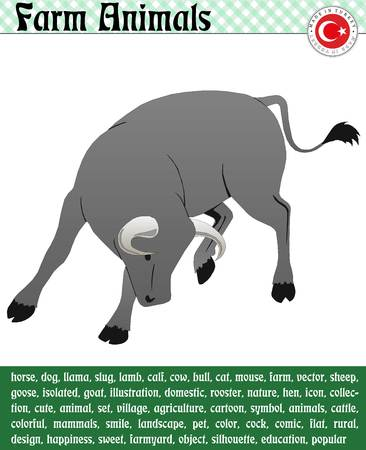 Different Angry Gray Bull Standard-Bild - 126352649