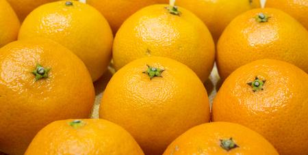 vitamine: Beautiful orange tangerines. Stock Photo