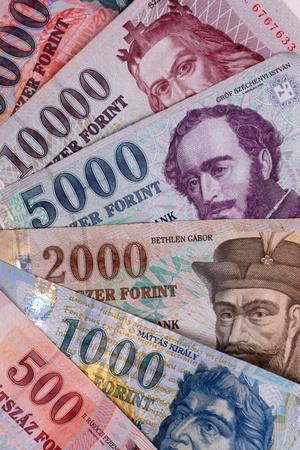 これらはハンガリーの銀行券、これは、フォリント 写真素材 - 13830162