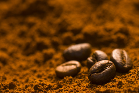 Some coffee beans are on coffee powder.