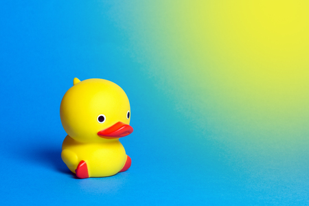 One yellow cute bath duck on blue background.