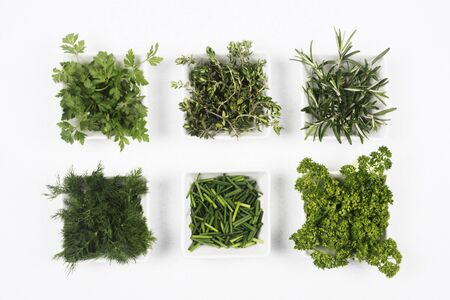Different fresh green herbs and spices for seasoning are in dish on white background. 写真素材