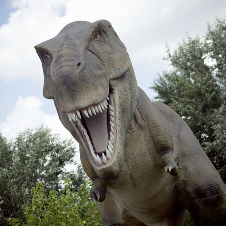 Tyrannosaurus rex dinosaur predator extinct animal is opening mouth in nature.