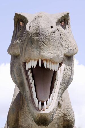 Front view animal portrait of extinct tyrannosaurus rex dinosaur. 写真素材