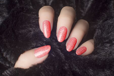 Female hand with glittered red nails is holding black fur, manicure and nail care concept. 版權商用圖片