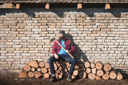 The lumberjack is sitting with his axe on tree trunks on brick wall background.
